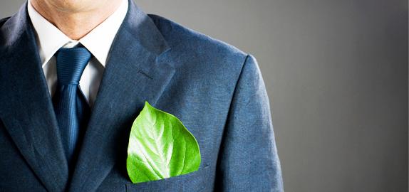 zelene-kancelarije